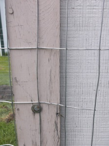 """We secured the fencing to the side of the building, adding a washer with the nail to give it more """"grip."""""""