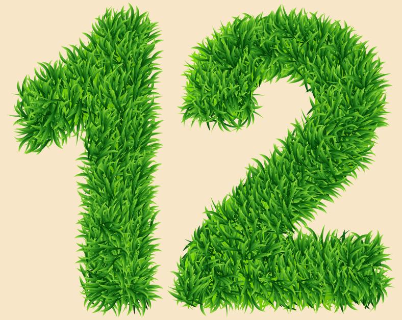 grassy 12