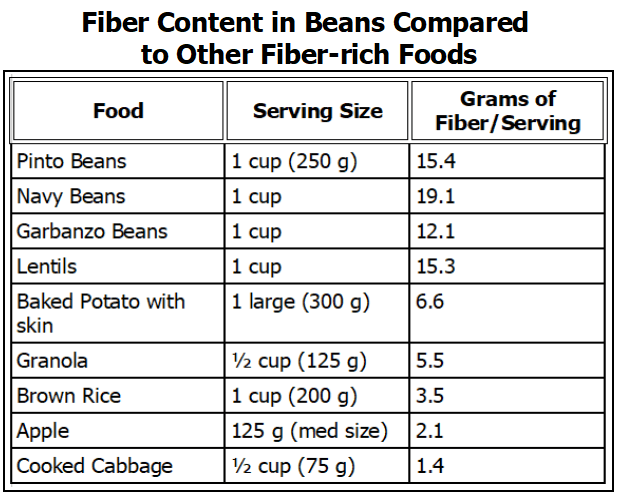 Bean fiber